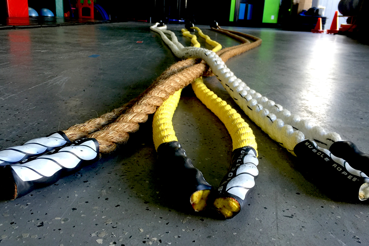 Top 5 Best Battle Ropes