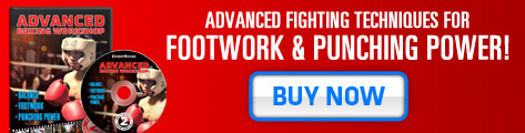 advanced boxing workshop to increase punching power