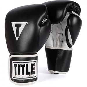 TITLE Pro Style Gloves