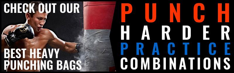 Expert Boxing Premium Membership